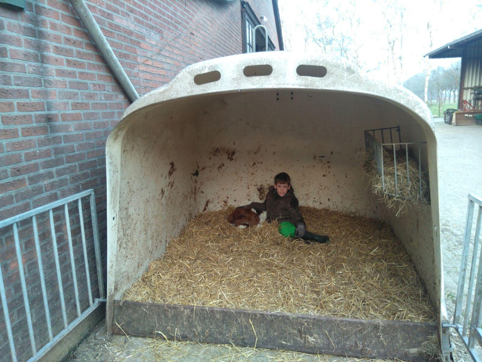 Daniella Boerkamp - Kalfje met Jelle