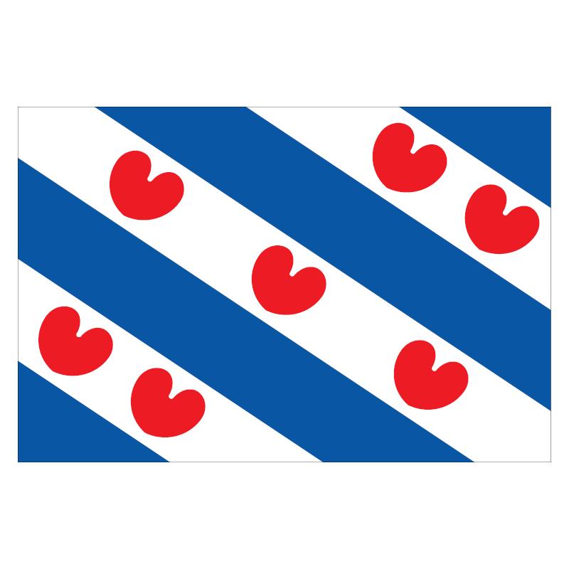 DS1000992_Vlag_Friesland_Foto