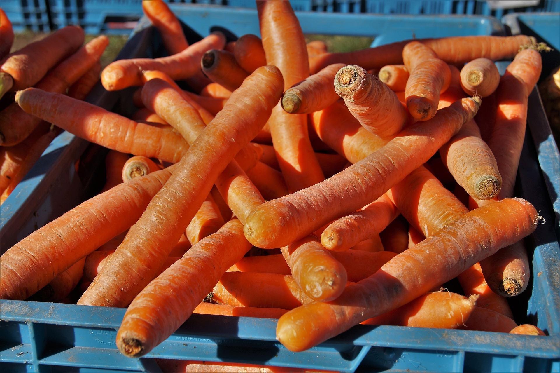 carrots-4077582_1920